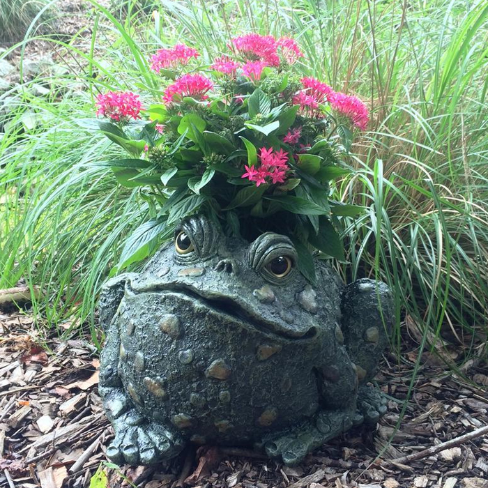 Large Toad Planter