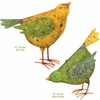 Barn Birds Decor (Set of 2)