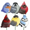 Audubon Resin Bird Stakes (Set of 6)