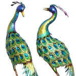 Colorful Blue Peacock Birds (Set of 2)