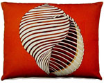 Conch Outdoor Pillow