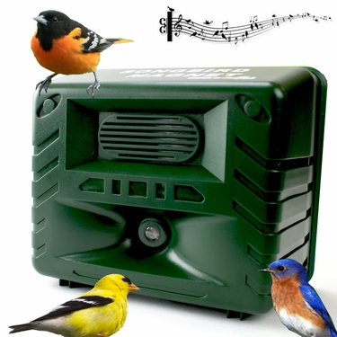 Electronic Songbird Magnet Bird Caller - Click to enlarge