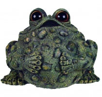 Extra Large Buddha Toad - Dark Natural - Click to enlarge
