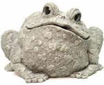 Extra Large Toad - Gray