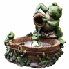 Frog Prince Grooming Tabletop Fountain