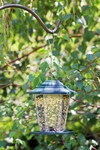 Hanging Carriage Bird Feeder