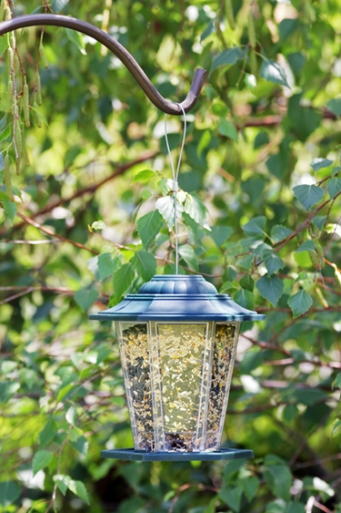 Hanging Carriage Bird Feeder - Click to enlarge