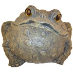 Jumbo Toad Statue - Dark Natural