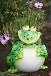 Large Frog Phatzo Planter