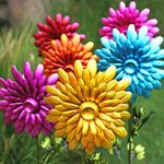 Large Metal Flower Garden Stakes (Set of 3)