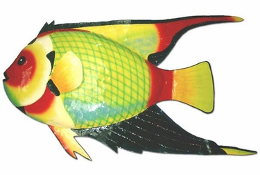 Large Queen Angel Fish Decor - Click to enlarge