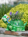 Large Turtle Phatzo Planter