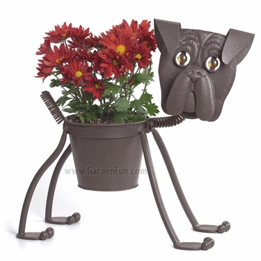 Lenny The Boxer Dog Planter - Click to enlarge