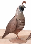 Metal Quail Bird Male