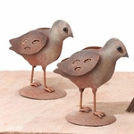 Quail Chicks (Set of 2)