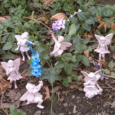 Miniature Fairy Set (6-pc) - Click to enlarge