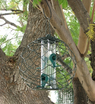 Mixed Seed Globe Feeder - Click to enlarge