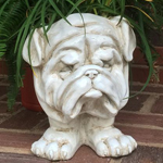 Muggly Bulldog Planter - Antique Finish