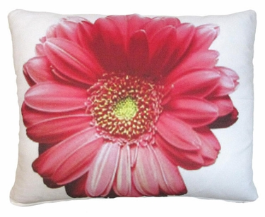Pink Gerbera Outdoor Pillow - Click to enlarge