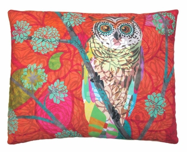 Red Owl Outdoor Pillow - Click to enlarge