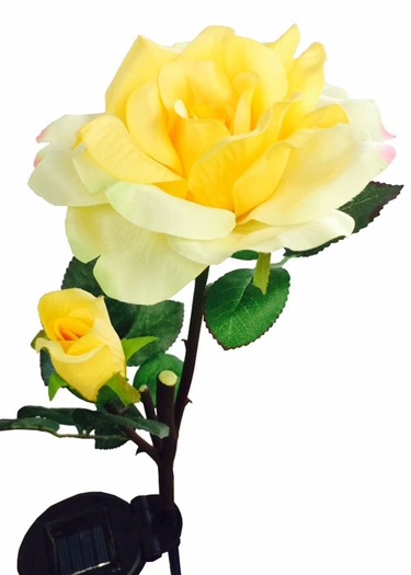 Solar Flower - Yellow Rose - Click to enlarge