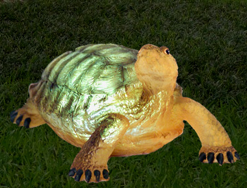 Solar Turtle - Click to enlarge