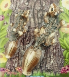 Squirrel Set Tree Art