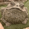 Super Duper Toad Statuary - Dark Natural