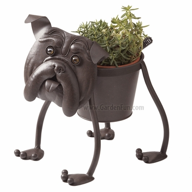 Ugga the Bull Dog Planter - Click to enlarge