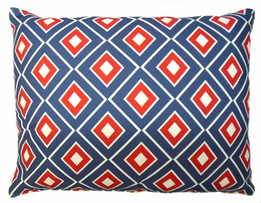 Vector Outdoor Pillow - Click to enlarge