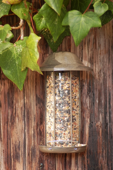 Wall Mount Feeder w/Perch - Click to enlarge