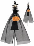 Witch Pumpkin Decoration (Set of 2)