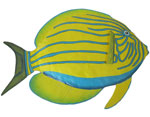 Yellow Surgeonfish Wall Decor