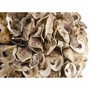 Authentic Oyster Shell Spheres in Three Sizes