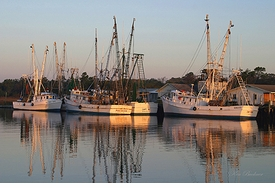 Morning Shrimp Boats Giclee