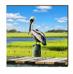 Pelican on Piling  <font color=a8bb35> NEW</font>