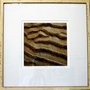 Sand Ripples 4 Giclee