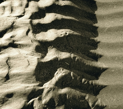 Sand Ripples 5 Giclee