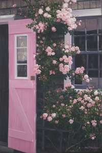 The Pink Door - Nantucket
