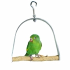 Bird Swings
