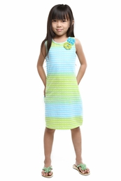 Haven Girl Animal Party Rainbow Chevron Shift Dress