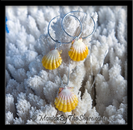 Bright Clean & Sunny Hawaiian Sunrise Shell Necklace & Silver Hoop Earrings 3 pcs Set