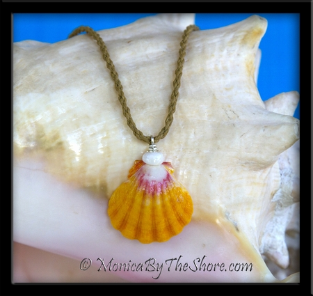 Classic Country Hawaiian Sunrise Shell & Puka Shells Twisted Cord Necklace