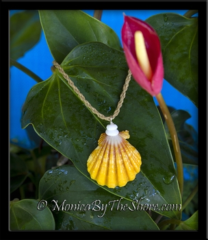 """Country Style"" Hawaiian Sunrise Shell and Puka Shells Twisted Cord Necklace"