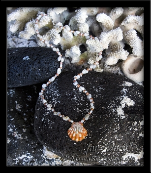 "Custom for ""Doris"" Hawaiian Sunrise Shell Kahelelani Niihau & Momi Shells with Pearls Necklace"