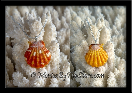 Double Pair Hawaiian Sunrise Shell Pendant Necklace ~ Orange & Yellow Shells