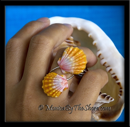 Double Peach Pink Sunrise Shells .999 Fine Silver Wrap Ring