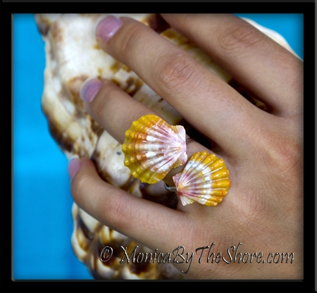 Double Sunrise Shells Fine Silver Wrap-Around Hawaii Ring