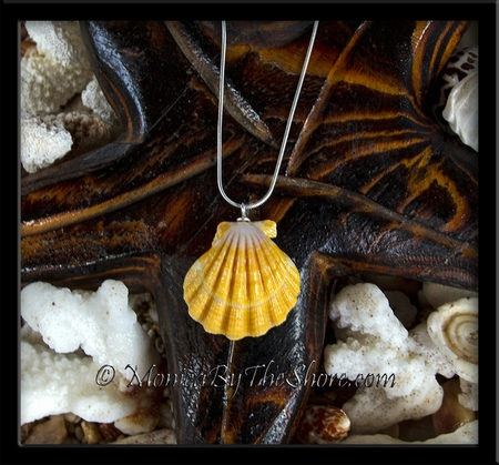Giant Bright Yellow Hawaiian Sunrise Shell Silver Necklace
