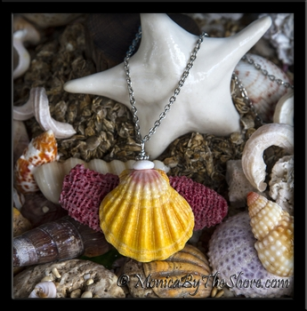 Jumbo Classic Hawaiian Sunrise Shell & Puka Shell Sterling Silver Necklace